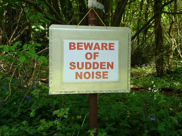 Beware of sudden noises!