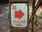 Box Hill Hike