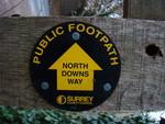 North Downs way