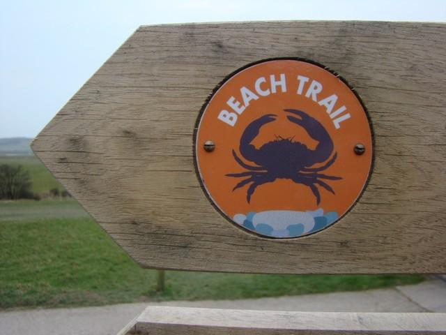 Beach Trail, Cuckmere Haven