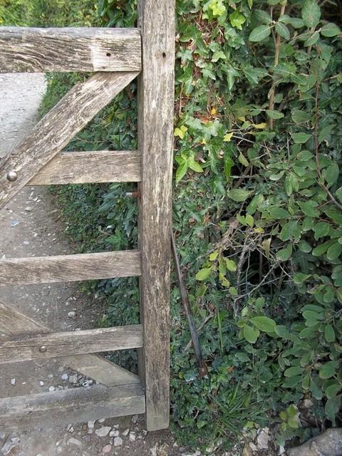 Upside down! Birling Gap.